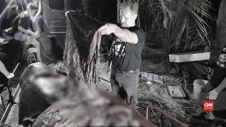 VIDEO: Lagi, Paus Mati Akibat Telan 40 Kilogram Plastik