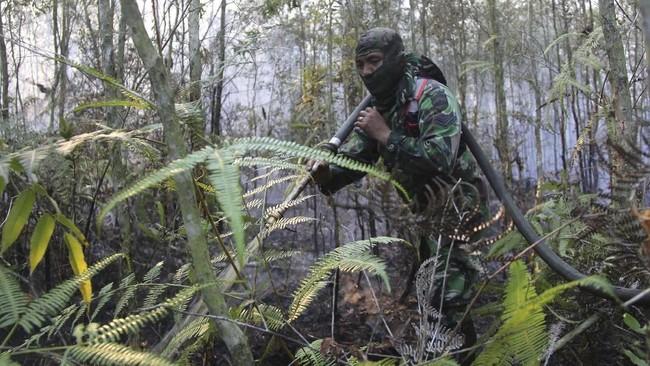 Data terkini BPBD Riau menyatakan luas Karhutla di Riau sejak Januari sudah lebih dari 2.000 hektare, terluas di Bengkalis yakni 1.045,43 Ha. (ANTARA FOTO/Aswaddy Hamid)