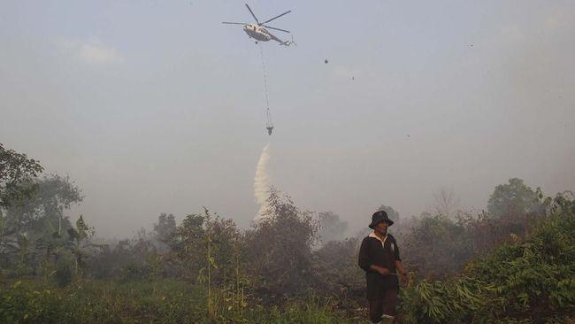 Bom Air Dinilai Paling Efektif Padamkan Karhutla