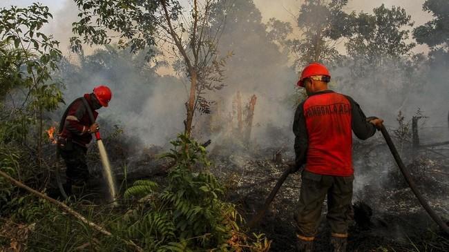 Riau kini sudah berstatus Siaga Darurat Karhutla hingga Oktober 2019. Kebakaran lahan gambut sudah mulai terjadi sejak Januari, dan intensitasnya meningkatkan pada Maret ini. (ANTARA FOTO/Rony Muharrman)
