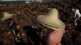 Jokowi menyarankan para petani sawit untuk menanam durian karena varietas produknya yang beragam. Selain itu, tidak semua negara mampu memasok durian di pasar internasional. (REUTERS/Samsul Said).