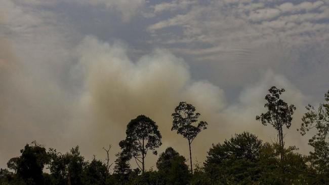 Kepulan asap membubung ke udara ketika terjadi kebakaran lahan gambut di Kepulauan Meranti, Riau. Jika kebakaran tak juga padam, dikhawatirkan akan terjadi kabut asap. (ANTARA FOTO/Rony Muharrman)