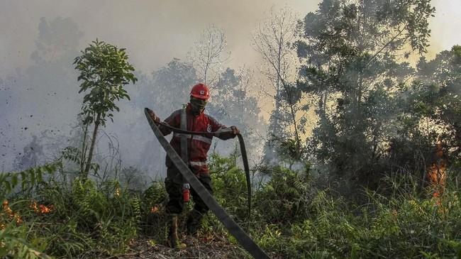 BMKG menyatakan per Rabu (20/3) jumlah titik panas terbanyak terjadi di daerah pesisir Riau yakni Bengkalis (39 titik), Pelalawan (37), Meranti (31), Rokan Hilir (17), Dumai (16), Siak (11), Indragiri Hulu (6), Indragiri Hilir (3), Kampar (2), Rokan Hulu (2), dan Kota Pekanbaru (1). (ANTARA FOTO/Rony Muharrman)