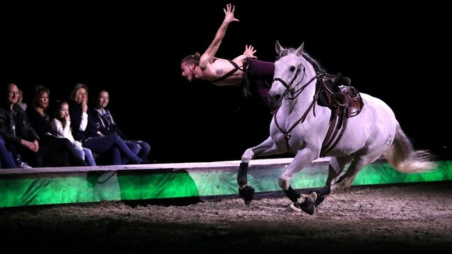 Seekor kuda dan seorang seniman tampil di acara