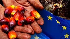 Diskriminasi Sawit Uni Eropa