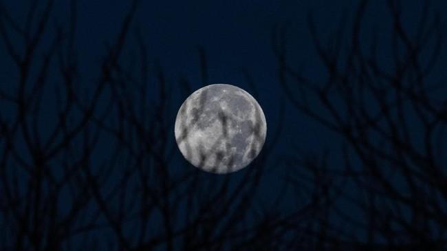 Supermoon terakhir yang dinamakan 'super worm equinox moon'membuat Bulan akan terlihat bersinar lebih terang, dan terlihat lebih besar dari ukuran malam-malam sebelumnya.(Photo by Mohd RASFAN / AFP)