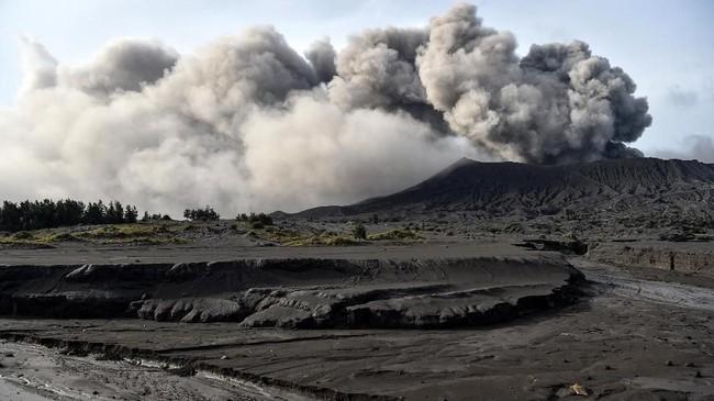 Gunung Bromo mengalami erupsi secara fluktuatif sejak akhir Februari2019. (ANTARA FOTO/Widodo S Jusuf)