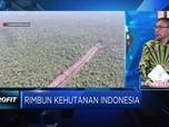 Buruknya Kondisi Hutan jadi Kambing Hitam Banyaknya Bencana