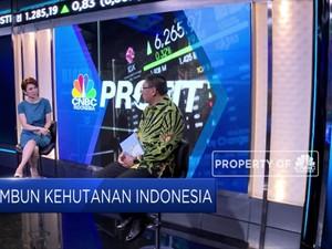 Wahai Uni Eropa! Ini Jurus Indonesia Tekan Deforestasi