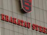 Menteri Erick Rombak Jajaran Komisaris Krakatau Steel