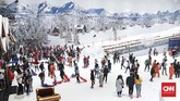 Lahan seluas 6.500 meter persegi di TransPark Mall Bekasi disulap jadi miniatur pegunungan Alpen. Ada lima area yang membuat pengunjung bisa merasakan suasana bak di sana. (CNNIndonesia/Safir Makki)
