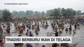 Tradisi Berburu Ikan di Telaga