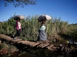Cerita Miris Krisis Zimbabwe, Tarif Listrik Naik 4 Kali Lipat