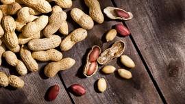 Studi: Dua Sendok Kacang Tingkatkan Fungsi Otak