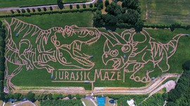 Taman Labirin Unik di Dunia