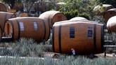 Tequila adalah minuman distilasi yang terbuat dari tanaman agave yang dibuat di sekitar kota Tequila.