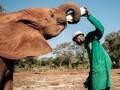 FOTO: Babak Baru Gajah Kenya