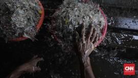 5 Inovasi Kelola Sampah Buatan Indonesia