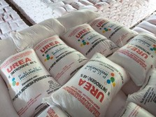 Suap Distribusi Pupuk: Antara DPR, Humpuss, & Pupuk Indonesia