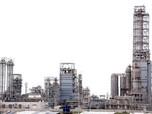 S&P Naikkan Rating Perusahaan Kimia Milik Prajogo Pangestu
