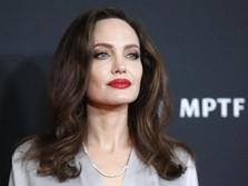 Dunia Dilanda Covid-19, Ini Pesan Angelina Jolie