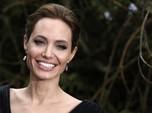Penjahat Seks Ini Buat Brad Pitt Ribut dengan Angelina Jolie