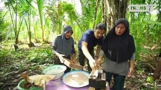 VIDEO: Menjelajahi Alam Liar Halmahera Barat