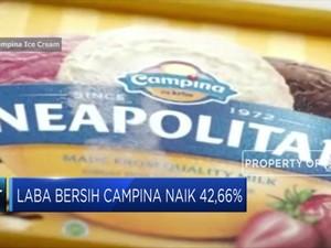 Laba Bersih Campina Naik 42,66% di 2018