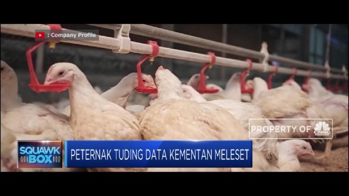 Setelah kinerja saham terkoreksi pekan lalu menyusul sentimen penurunan harga jual daging ayam.