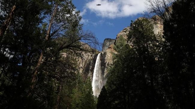 Taman Nasional Yosemite memiliki luas daerah sebesar 3.080 kilometer (km) persegi.
