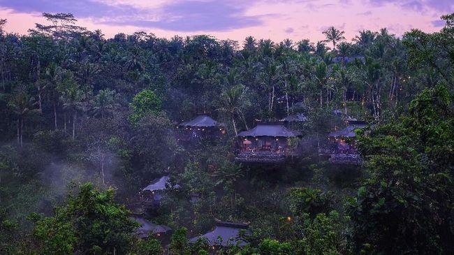 Ada Hotel Mewah di Tengah Rimbunnya Hutan Ubud