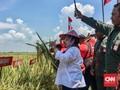 Megawati Imbau Relawan Ibu-ibu Sediakan Nasi Bungkus Saksi