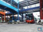 Pengusaha Bus AKAP Terpukul Corona: No Work, No Pay!