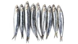 Jenis Ikan Asin yang Nikmat dan Populer di Indonesia