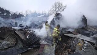 Kebakaran Hutan Meluas, Korsel Deklarasikan Bencana Nasional