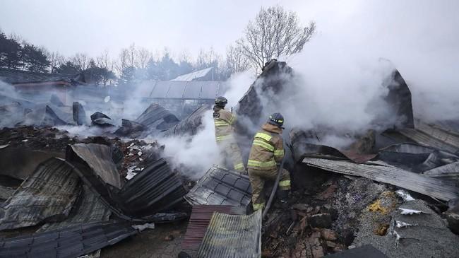Aparat setempat melaporkan bahwa api di Sokcho sudah berhasil diatasi, sementara 50 persen kebakaran di Gangneung masih menyala. (Yonhap via Reuters)