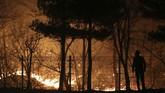Api mulai menyala di Provinsi Gangwon pada Kamis malam dan dengan cepat menyebar ke kota Sokcho dan Gangneung. (Yonhap via Reuters)