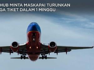 Harga Tiket Pesawat Mahal, Menhub Ultimatum Maskapai