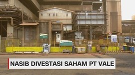 VIDEO: Nasib Divestasi Saham PT Vale