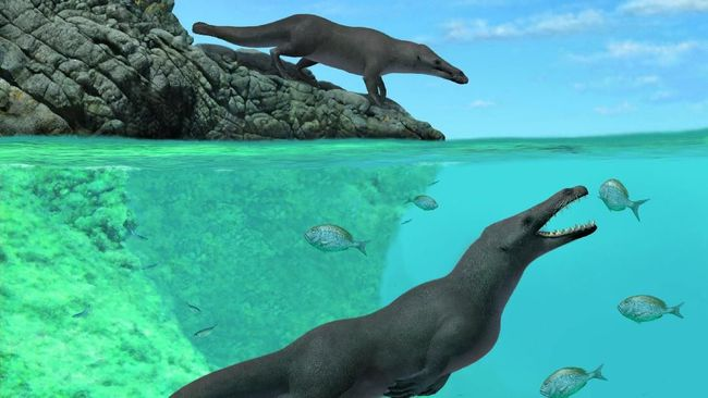 Penambang Batu Permata Temukan Fosil 'Monster Laut'
