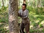 Punya Kebun Terluas, Tapi Karet RI Kalah dari Malaysia