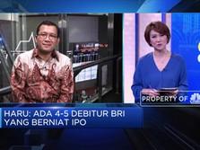 BRI & Danareksa Sekuritas akan Dorong Perusahaan IPO
