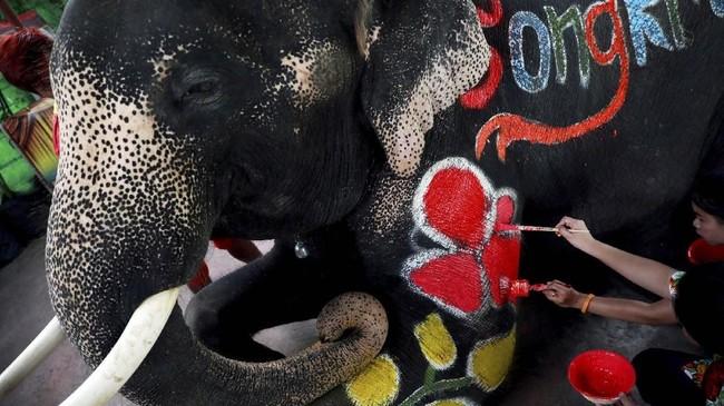 Pawang gajah (mahout) menggambari badan gajah dengan hiasan berbentuk hati dan bunga sebelum tampil dalam Festival Songkran di Ayutthaya, Thailand, Kamis (11/4). (REUTERS/Soe Zeya Tun)