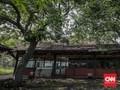 Keluh Kesah dan Siasat Pantura Hadapi 'Badai' Trans Jawa