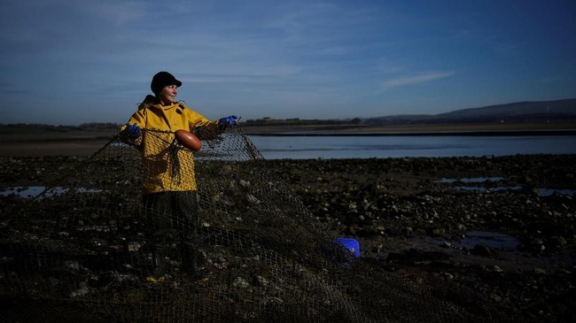 Seorang nelayan perempuan Inggris, Margaret Owen (66) tetap yakin negaranya akan bertahan walau hengkang dari Uni Eropa. (REUTERS/Clodagh Kilcoyne)