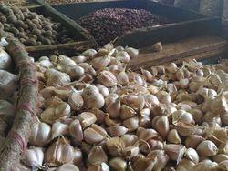 7 Perusahaan Dapat Kuota Impor Bawang Putih 100.000 Ton