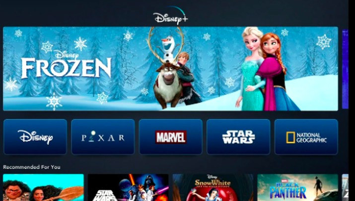Lebih Murah dari Netflix, Disney Plus Meluncur 12 November!
