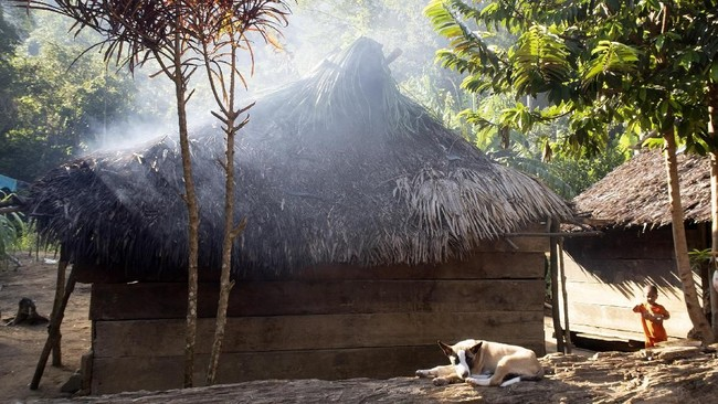 Suku Polahi di lokasi permukiman yang hanya memiliki tiga rumah dan dua dapur itu belum pernah menggunakan hak suara mereka di Pemilu. (ANTARA FOTO/Adiwinata Solihin)
