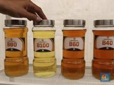 Biodiesel RI Kena Bea Masuk, Uni Eropa Bikin Akal-akalan Lagi