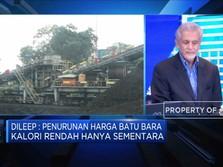 2019, BUMI Targetkan Produksi Batu Bara 90 Juta Ton